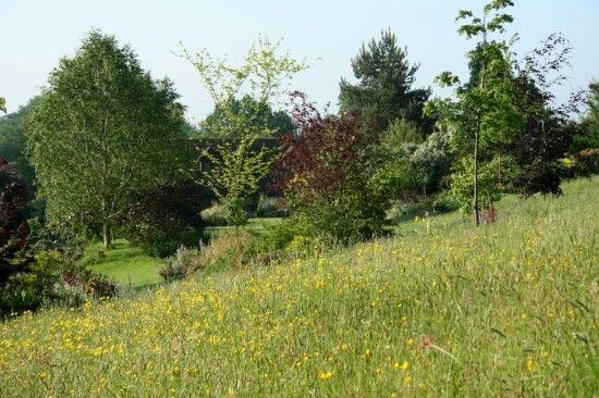 1 Sandhill farm