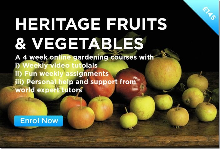 HERITAGE FRUITS & VEGETABLES 1