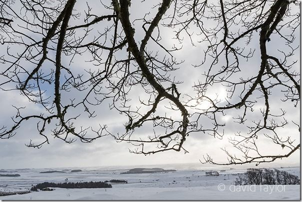 Snow-covered landscape between Housesteads Fort and Milecastle 37, Northumberland National Park, England