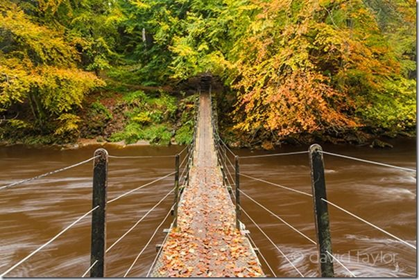 Suspension bridge over the River Allen at Allen Banks, Northumberland, England