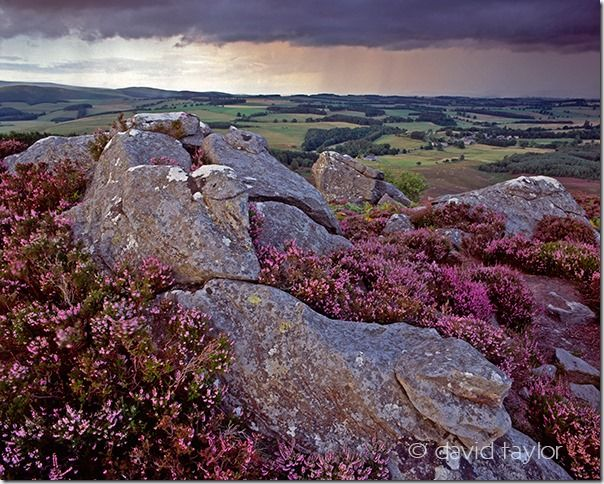 Harbottle crags near the Drake Stone on a stormy summer's evening, Northumberland National Park, England