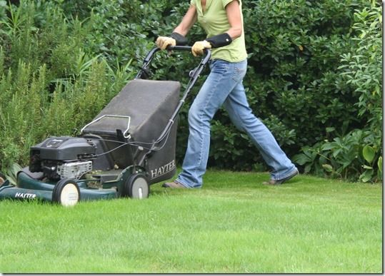 Online courses, sowing a new lawn, how to sow a new lawn, grass seed, lawns, lawn seed, Lawn care, Lawn maintainance, Ground preparation, grass seed mix,