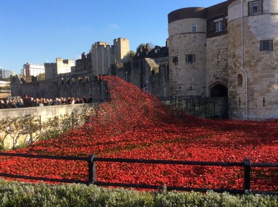 2 A wave of poppies in the moat