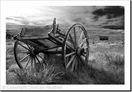 20091104-Cart