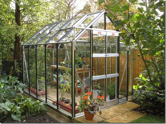 What Greenhouse Should I Buy?