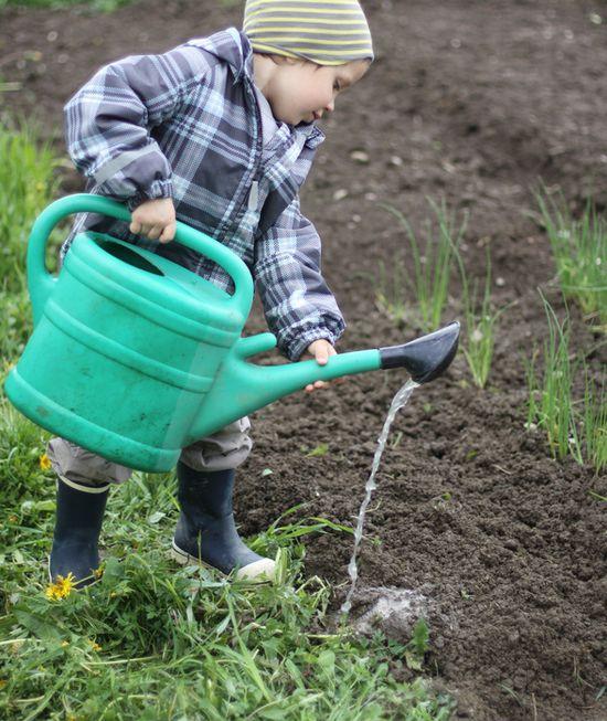 A boy watering soil