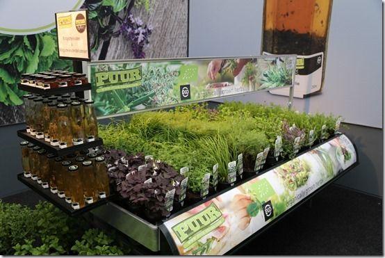 12_Organic_herbs[1]