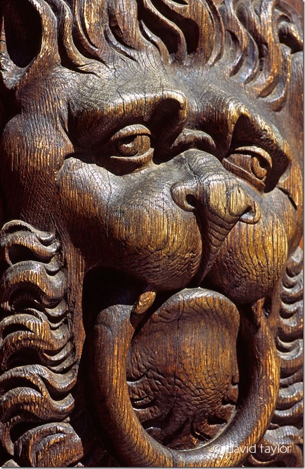 Wooden carving of a lion on the door to the city hall, Prague, Czech Republic, Travel Photography Tips, Travel Photography, Holiday photography, online photography courses,