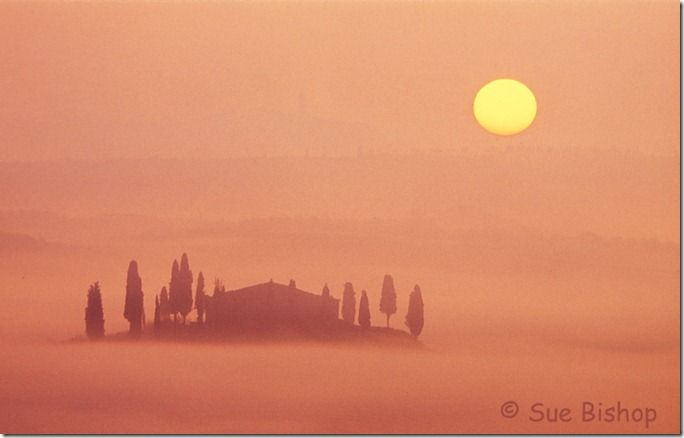 tuscan sunrise