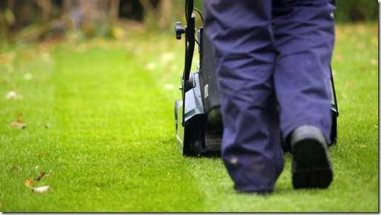 airating a lawn, airation, Autumn, Autumn Lawn Care, carbaryl, Corticium, Dollar spot, Fall lawn care, firtilizer, Fusarium, grass seed, Imidacloprid, lawn Pests and diseases, Leatherjackets, leaves, Mowing, re-seed, Spiking the lawn, Toadstools, trifloxystrobin