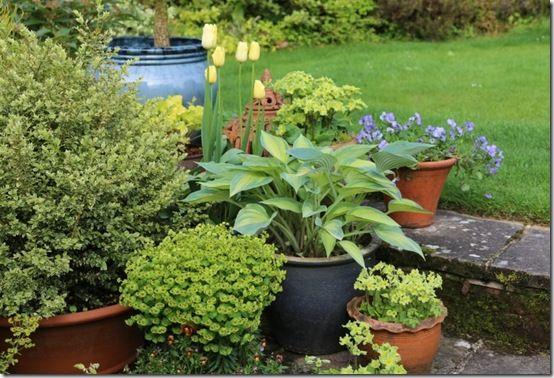 Pots grouped on steps