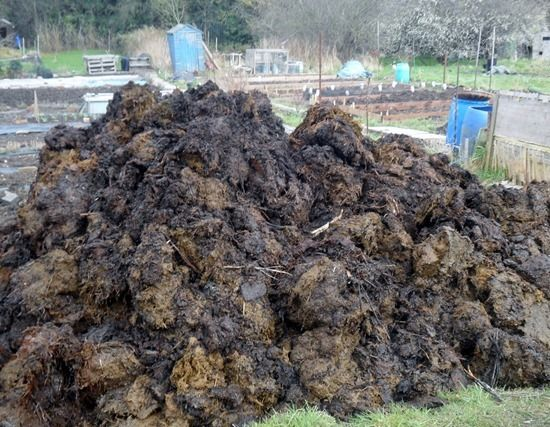 2 A heap of manure