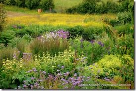 Naturalistic Planting (2)