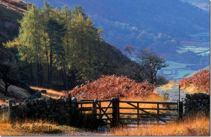 lake district gate shut