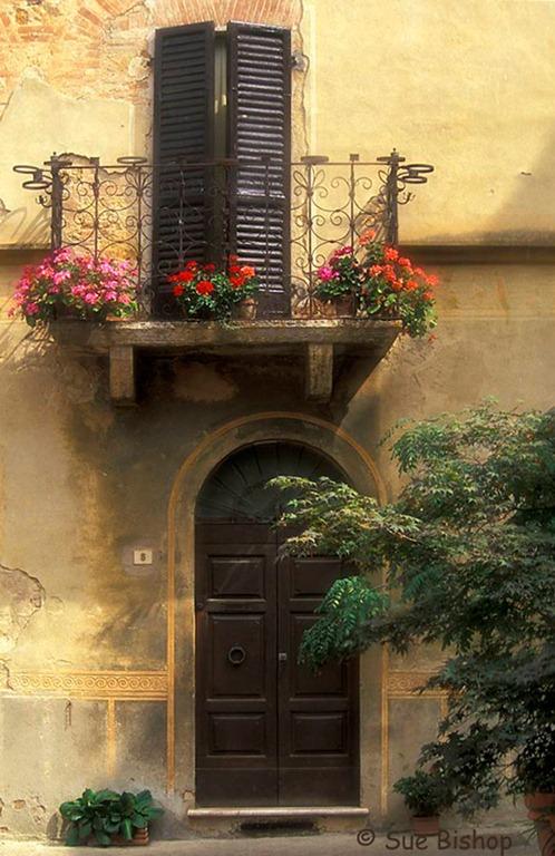 Choosing A Photography Theme Windows Doors Photography