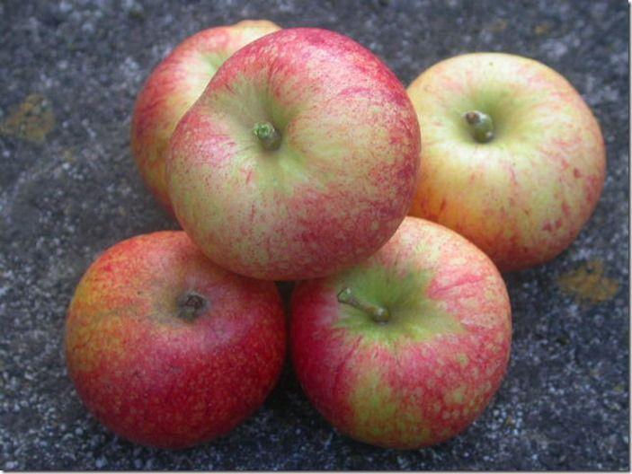 2 Apple Beauty of Bath