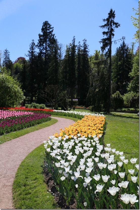 12 Tulipa Villa Tarranto
