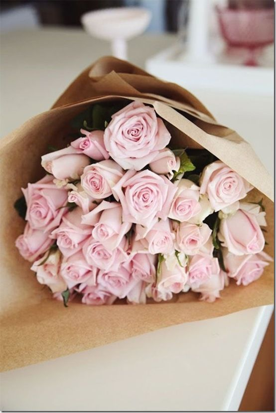 Pink Roses on Pinterest
