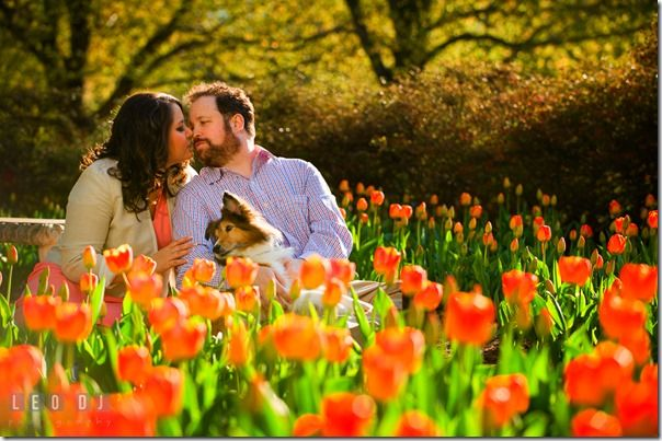 Becca-Seth-Sherwood-Gardens-Baltimore-Maryland-Engagement-Photography-0013