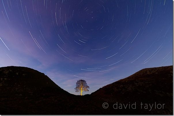 The sycamore of Sycamore Gap silhouetted against a star-filled winter's sky, Northumberland, England, exposure, automated camera modes, the Mode Dial, Dial Mode, Automatic modes, Miniature mode, Program mode, Aperture priority, Manual exposure