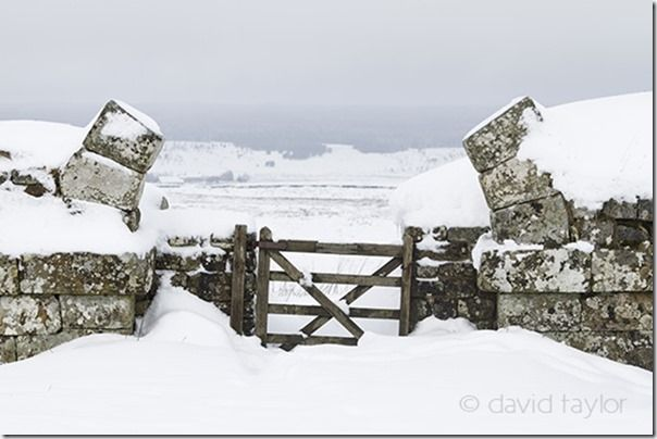 The gateway to Milecastle 37 on Hadrian's Wall covered in snow, Northumberland National Park, England, Composition, lead-in, lead in, lines, landscape, photography, landscape photography,