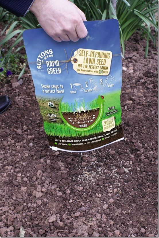 Using Rapid Green Lawn Seed