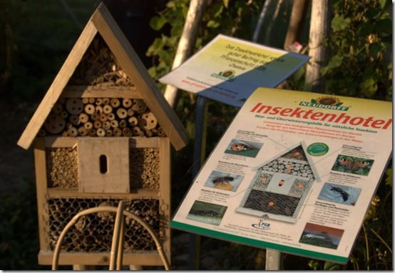 Insect hotel - Germany