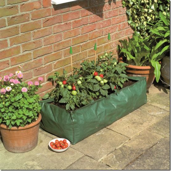 09119-Reusable Growbag