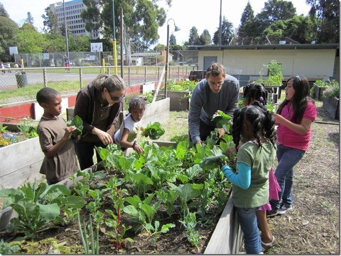 3 Community Garden