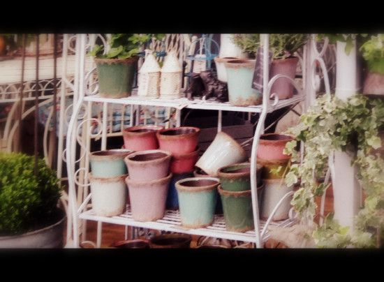 pots at Chelsea Flower Show