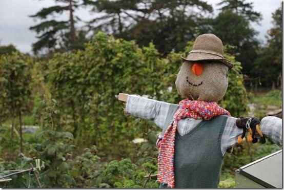 4. Scarecrow