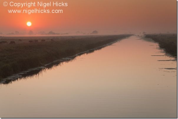 A misty sunrise view of the King's Sedgemoor Drain, in the Somerset Levels, nr Langport, Somerset, Great Britain. sunset, sunsets, exposure, golden hour, camera lens, white balance, sun, light, dusk,