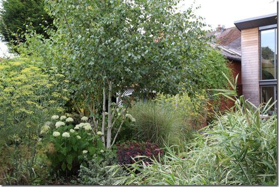 Theexisting garden