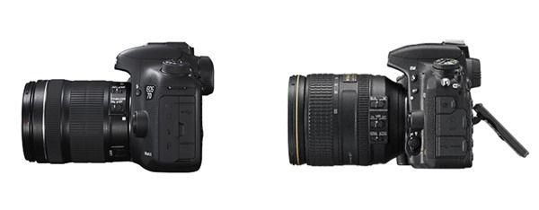 Canon & Nikon 3