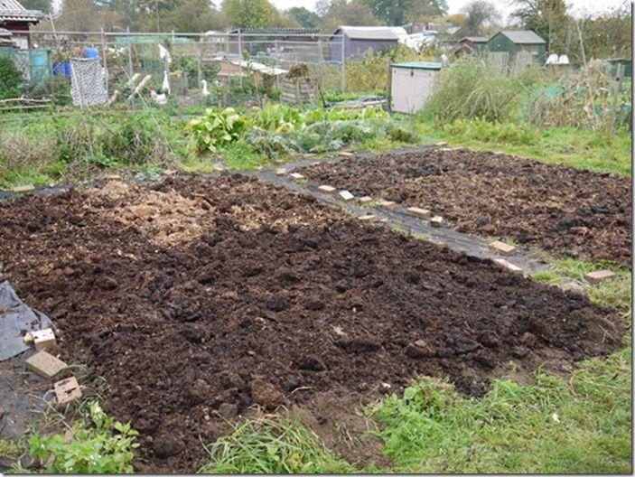 7 Applying manure