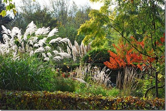 Planting Design with Grasses