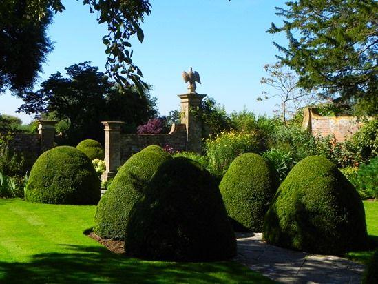7 Topiary (1024x768)