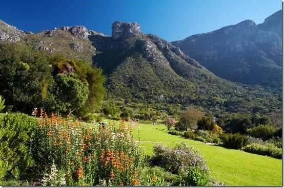 Kirstenbosch Botanical Gardens, Cape Town, South Africa
