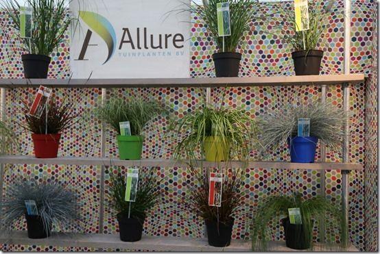 11_Alure_Grasses[1]