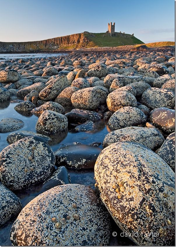 The view of Dunstanburgh Castle from the north bay showing the Lilburn Tower and Greymare rocks, Northumberland, England, Solstice, Equinox, sun rise, sun set, dawn, dusk, landscape, photography, online photography courses, David Taylor, summer, winter,