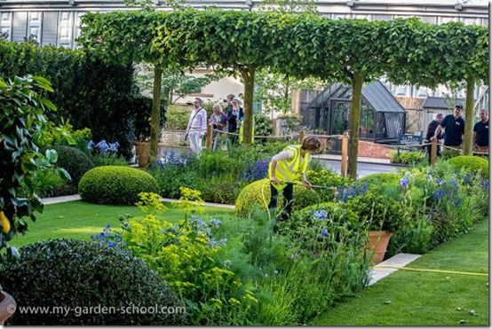 Chelsea Flower Show 2014 The Telegraph Garden2