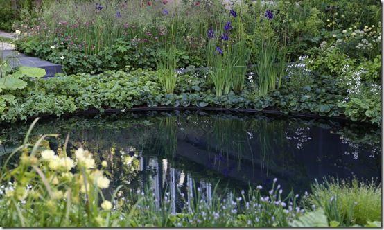 Chelsea pond