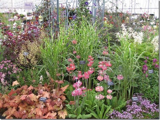 BBC Gardeners World Live (2)
