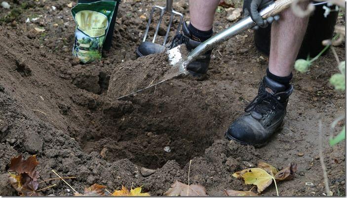 4 dig a hole