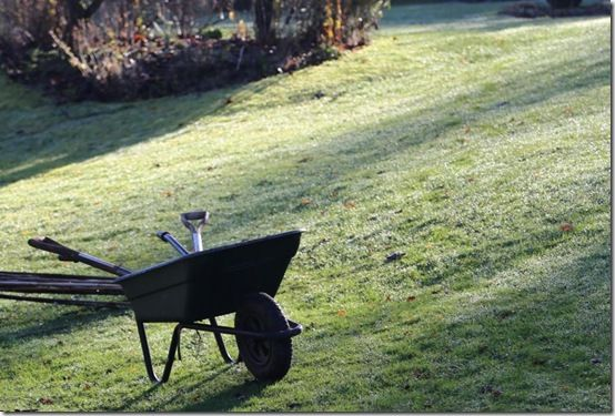frosty day wheelbarrow