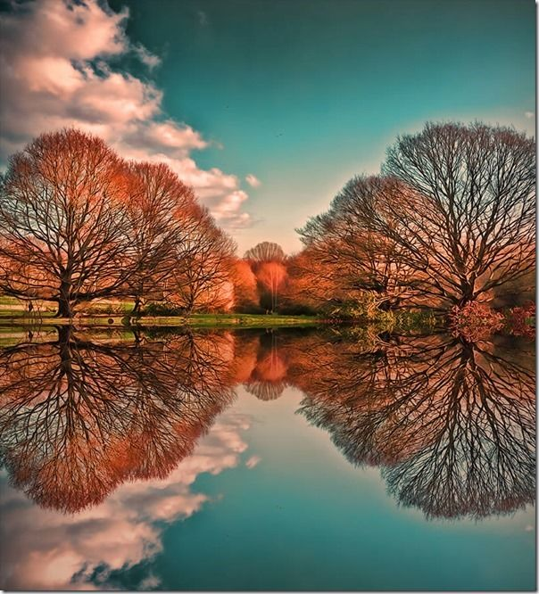 How to Photograph Reflections