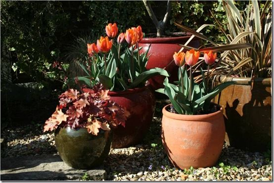 8. Group pots together