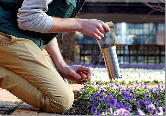 pic. 11bulb-planter-lifestyle