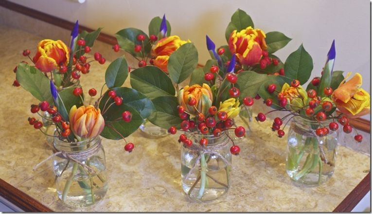 11 Rose hips, tulips and irises