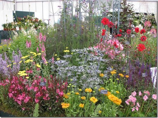 BBC Gardeners June 2011